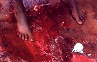 imagem ritual passagem da tribo okiek