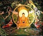 De acordo com os textos mais antigos, após ter alcançado o estado meditativo de jhana, Gautama estava no caminho certo para a iluminação, mas o seu ascetismo extremo não funcionou e Gautama descobriu o que os budistas chamaram de o Caminho do Meio, o caminho para a moderação, afastado dos extremismos da autoindulgência e da automortificação.  <br><br/> Palavras-chave: Iluminação, Buda, budistas, Shakyamuni, Gautama, religião, ritos, paisagem religiosa